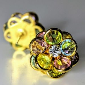 Colorful Post Earrings NEW Never Worn